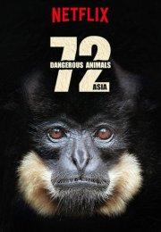 72 Dangerous Animals Asia 1. Sezon 12. Bölüm