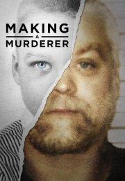 Making a Murderer 1. Sezon 10. Bölüm