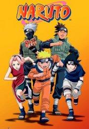 Naruto 1. Sezon 206. Bölüm