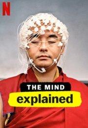 The Mind, Explained 1. Sezon 3. Bölüm